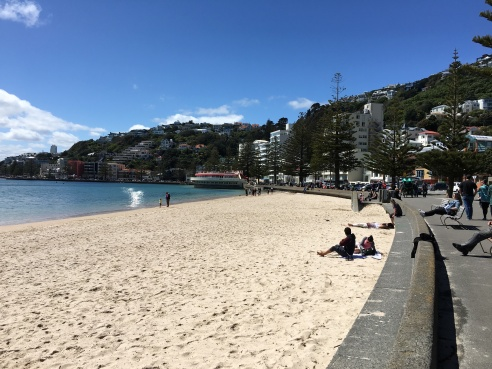 Wellington's beach